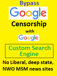 google custom search engine alt conservative
